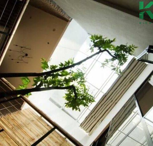 Hành lang các tầng được chiếu sáng tự nhiên từ giếng trời