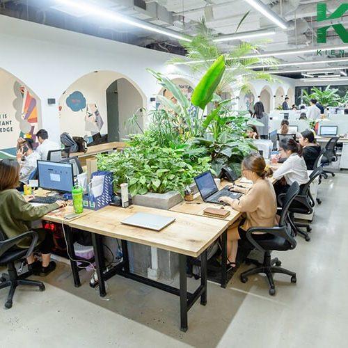 Văn phòng xanh đẹp