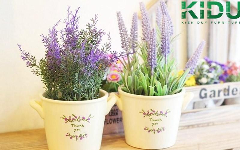 hoa oai huong